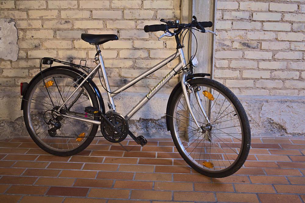 Mountainbike Karlsruhe